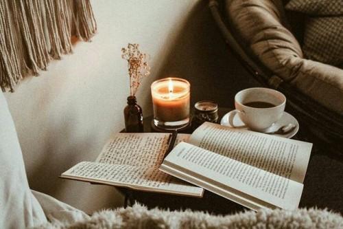 Một quan niệm về đọc sách - Chơn Linh